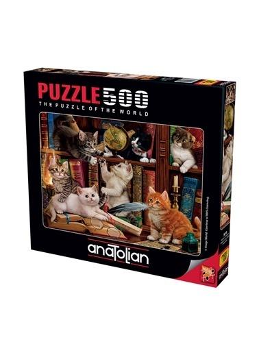 Anatolian  500 Parça Kediler ve Kitaplar 3618 Renkli